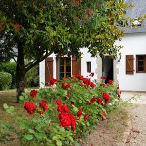 La Villa de la Plage et son jardin